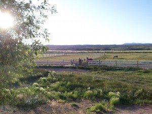 Amazon Ranch, Pioche, Nevada