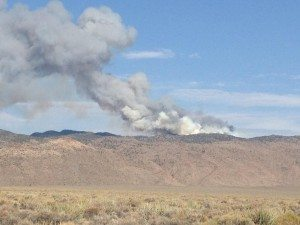 Two wildfires kicked off the month of July in the Bureau of Land Management Ely District. Both were reported on July 1.