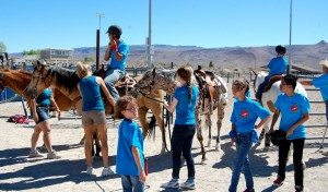 Some of the campers at this year's Camp Mend-a-Heart enjoy riding horses at the Alamo Rodeo arena.  For some, it was the first time ever being around a horse. (Dave Maxwell photo)