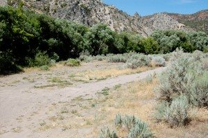 Requesting temporary closure by the Bureau of Land Management of an undeveloped campsite a little east of the Eagle Valley Resort