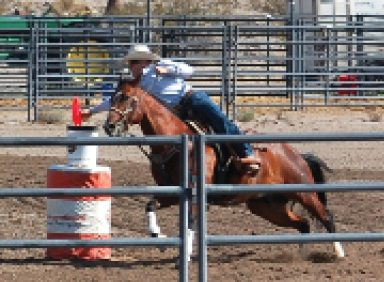 Alamo plays host to Wrangler Junior Rodeo