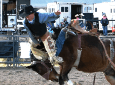 Alamo High Holds School Rodeo