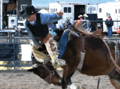 Alamo High Holds School Rodeo