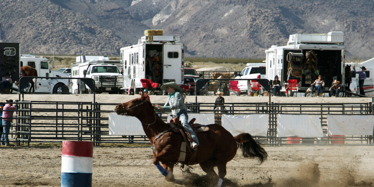 Over 100 Compete at Alamo Youth Rodeo