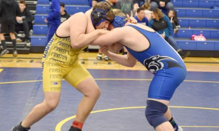 Panthers send five to state wrestling tourney