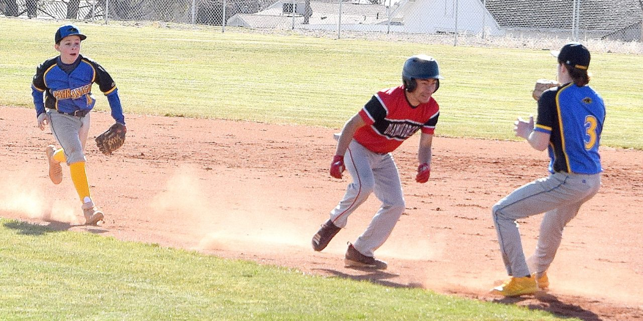 Panther boys open with four wins