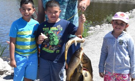 Beautiful weather results in strong turnout for annual Carp Rodeo