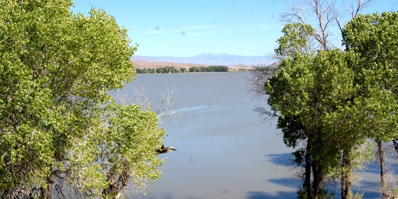 Water pipeline planned at Pahranagat Wildlife Refuge