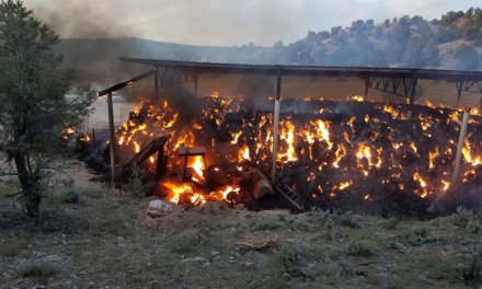 Fire Destroys Hay Bales, Vehicles
