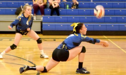 Lady Panthers top Virgin Valley again