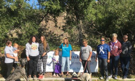 Suicide Prevention Walk Held