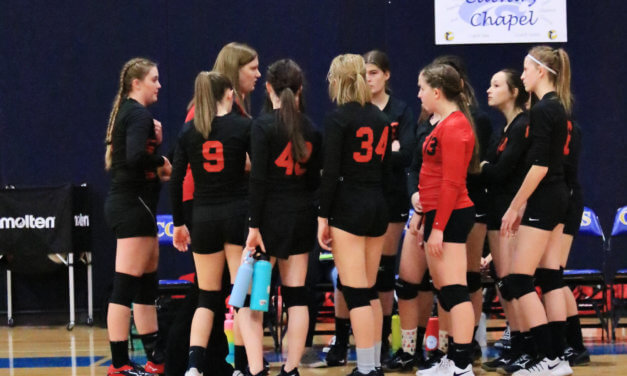 Lynx ousted in first round match