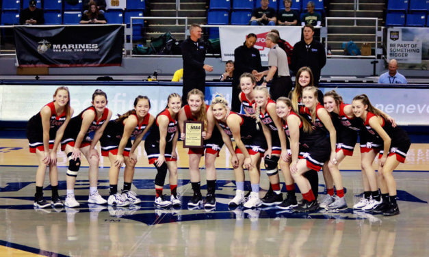 Season comes to an end for Lynx in state semifinals